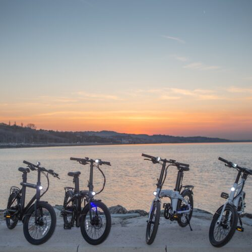 which electric bike should you choose out of this group
