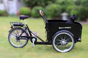electric cargo bike for families with dog