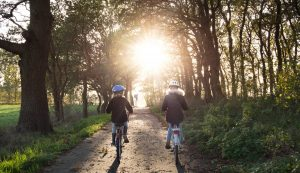 kids riding in forest with bikes